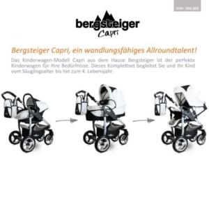 Bester Kinderwagen Bergsteiger kaufen - Allroundtalent